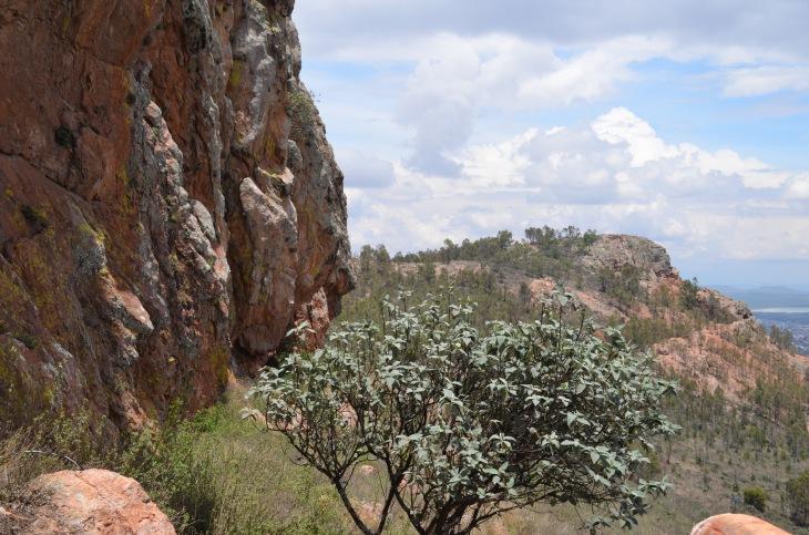 cerro de la bufa 4