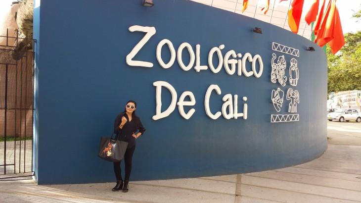 1 Zoo de Cali