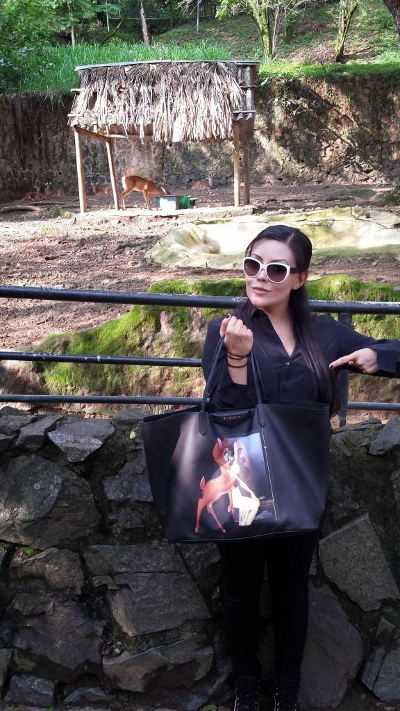 4 zoo de cali