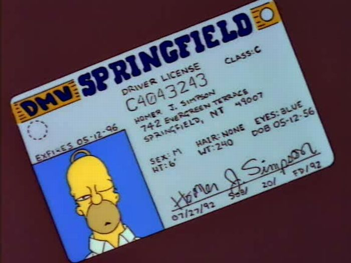 homer simpson licence