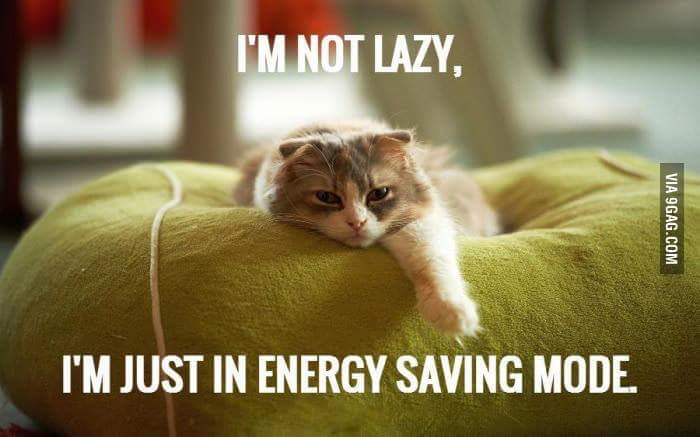 IM NOT LAZY IM JUST IN ENERGY SAVING MODE